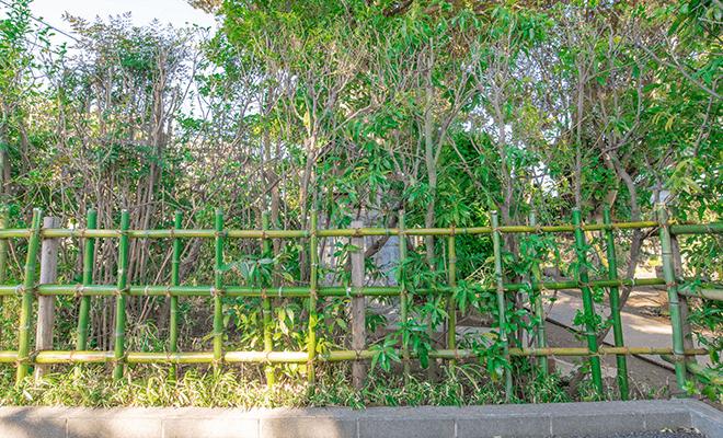 天然竹垣作成例